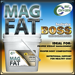 Mag Fat Boss by OxyGen to promote weight gain and build muscle from Oxy-Gen