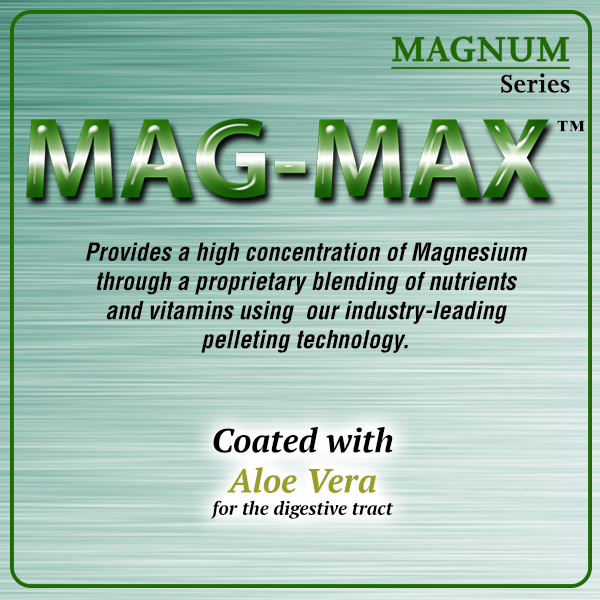 Mag-Max for Horses by Oxy-Gen Complete daily Supplement