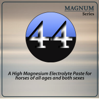 Magnum 44 Performance Day Paste from Oxy-Gen