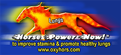 Horse Power now for Lungs performance paste