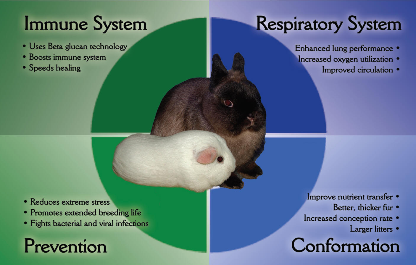 OxyGen for Rabbits and Cavies show animal supplements
