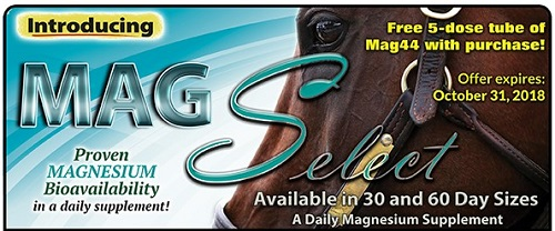 Mag Select from OxyGen daily magnesium supplment for horses
