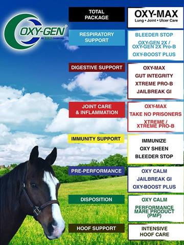 Oxy-Gen for Horses -  respiratory support, digestive support , joint care and inflammation , immunity support , performance , dispposition and hoof support