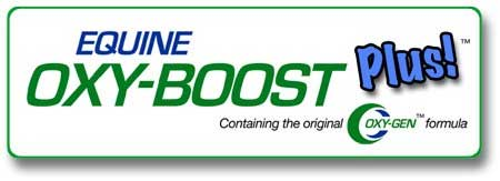 oxy boost plus equine pre race paste for better performance and faster recovery